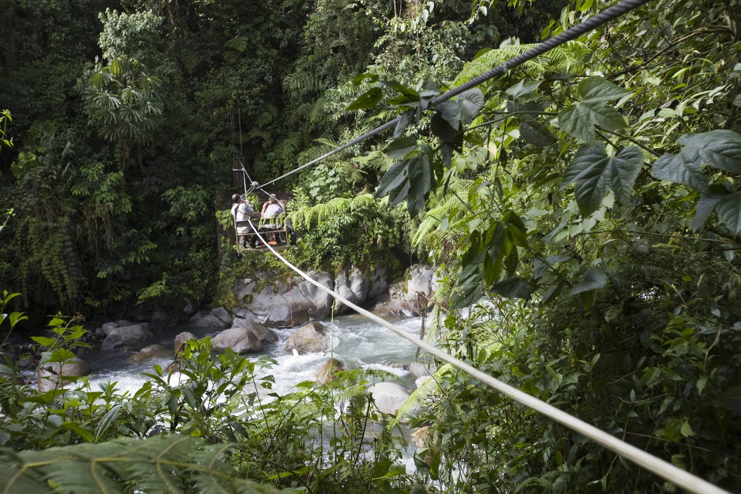 zip wire crossing in rainforest