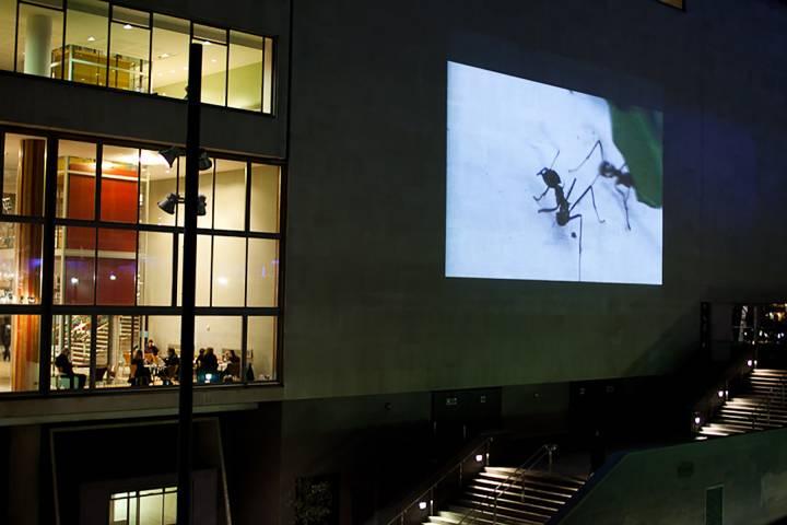 artwork projection