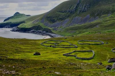 vast green costal landscape