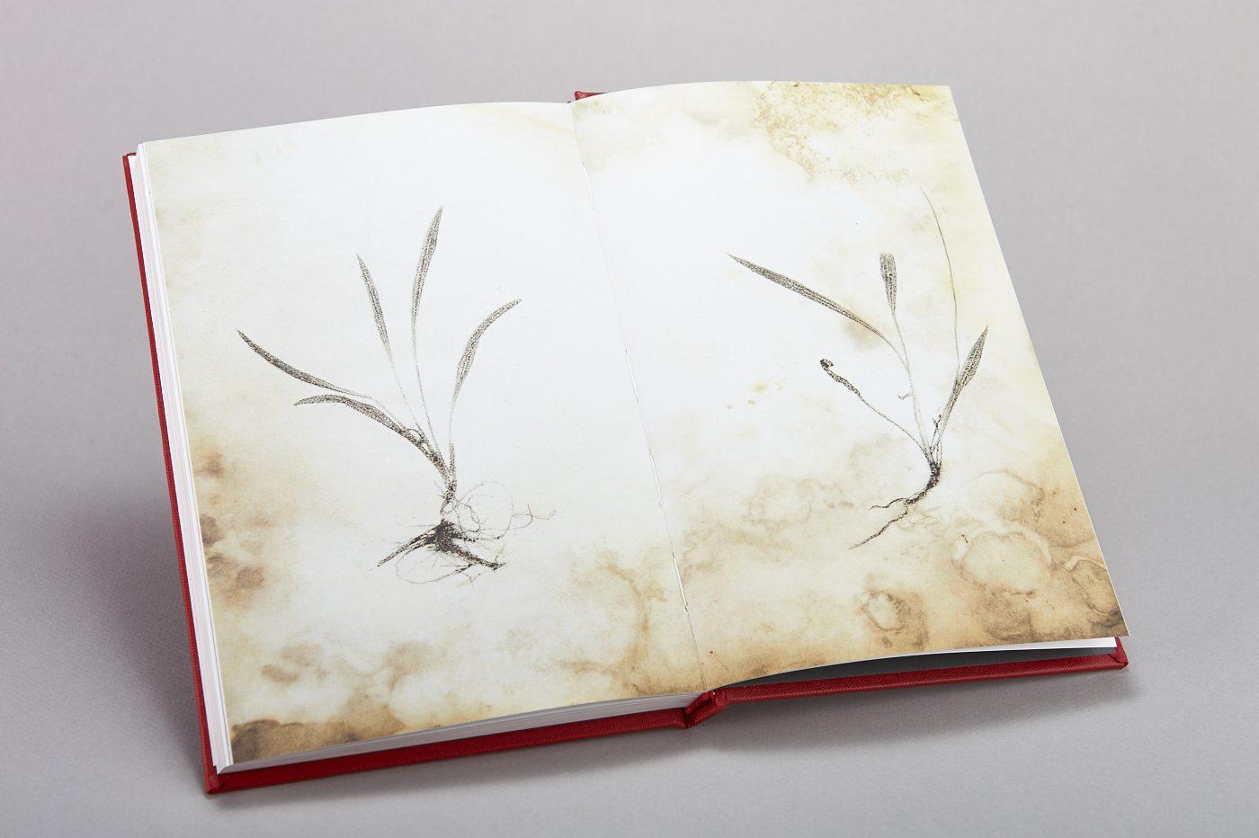 book inside spread