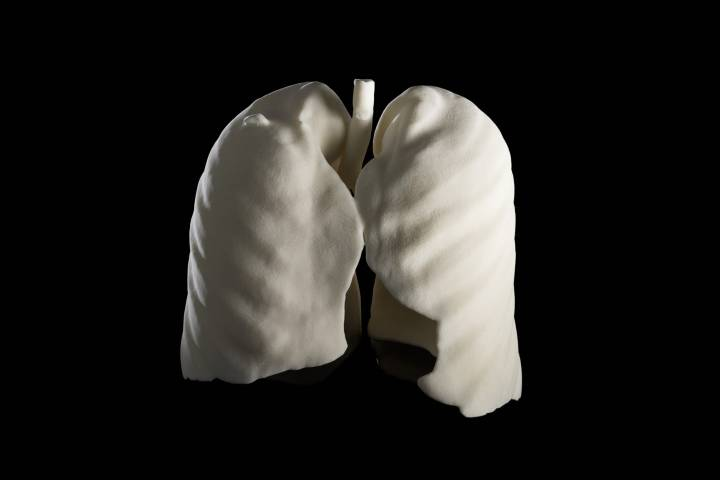 lung artwork