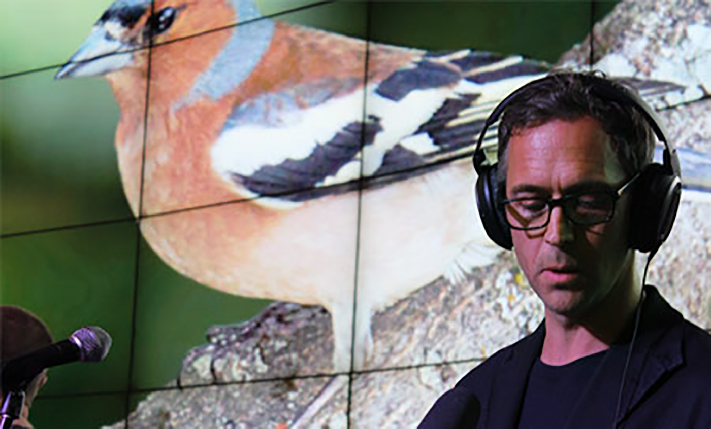 man in headphones in front of a projection of birds