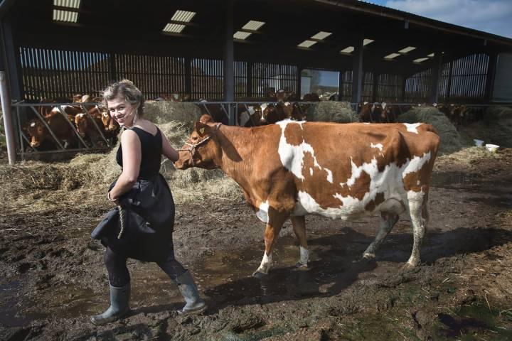 woman in dress leads milking cow