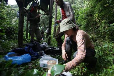 expedition crew in rainforest